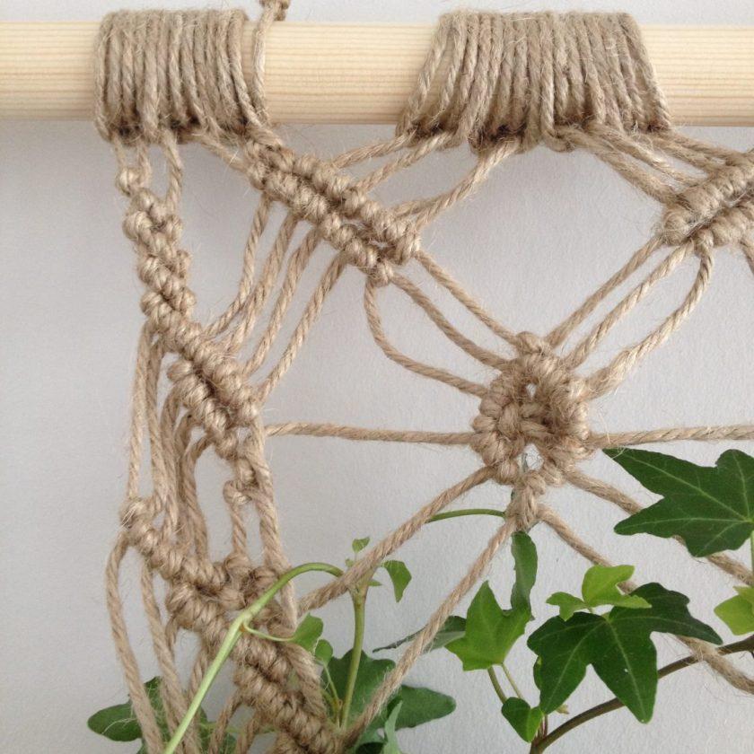 Muur Plant (2)