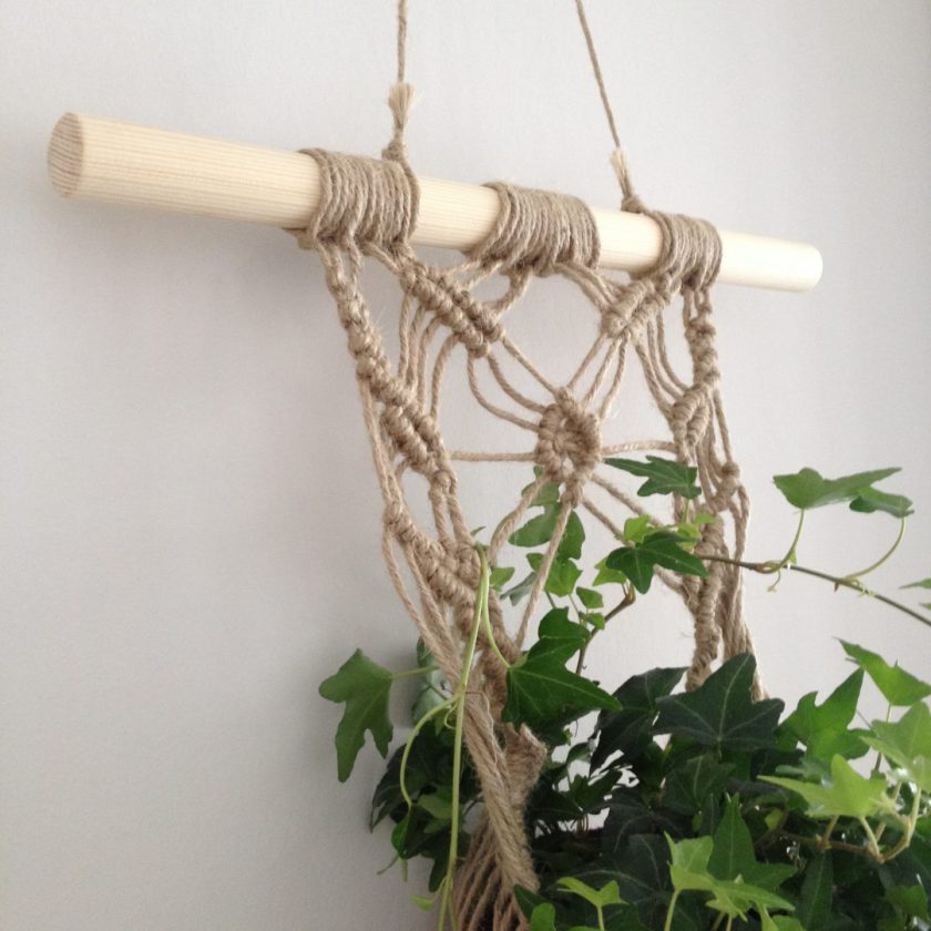 Muur Plant (4)