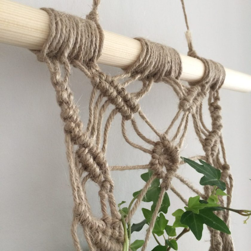 Muur Plant (8)